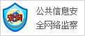 公共信息安全网络监察